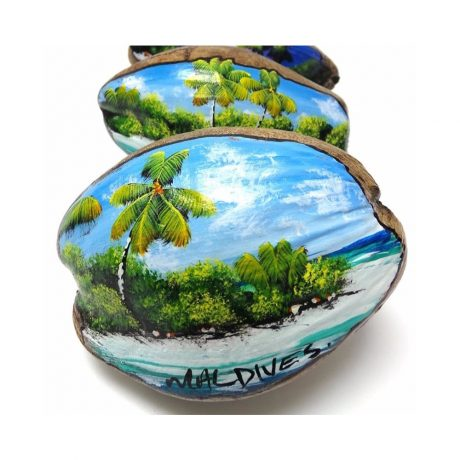 coconut shell painted