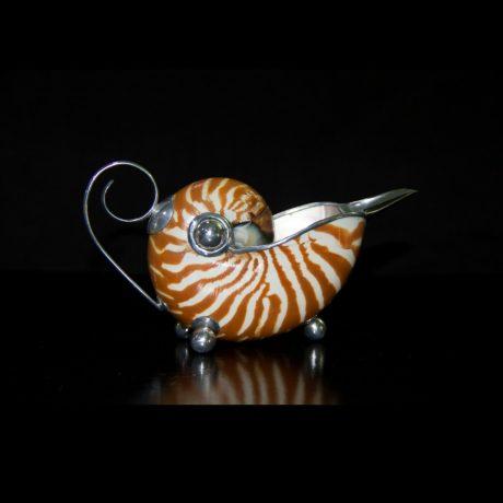 shell (5)
